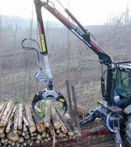 Pinza da legname